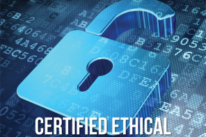 Become a Certified Ethical Hacker – CEH STANDALONE COURSE