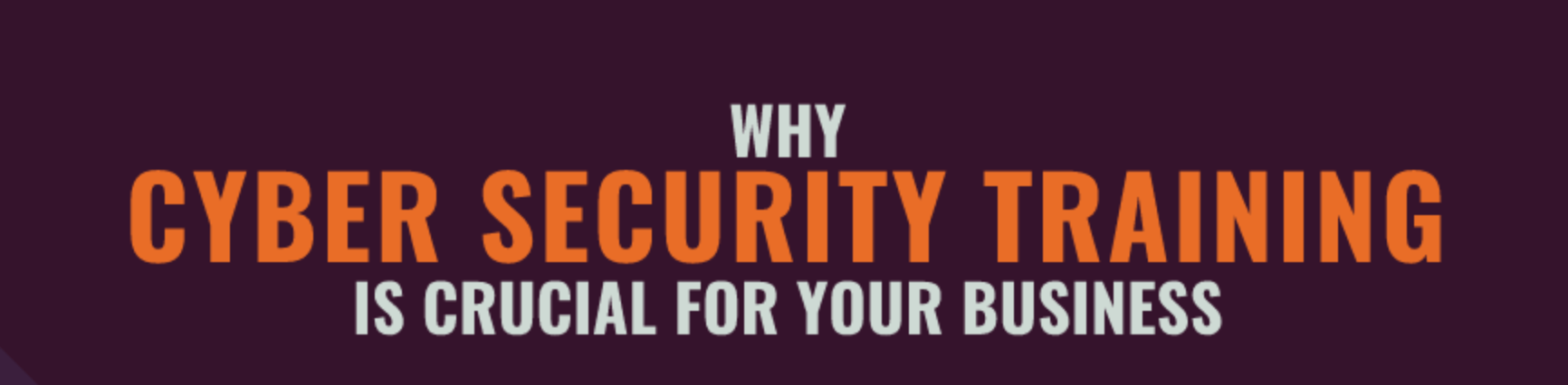 - Screen Shot 2018 07 17 at 10 - Why Cybersecurity Training is Crucial for your Business infographic by EveryCloud – Hakin9